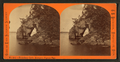 Boundary cave, entrance Pigeon Bay, by Childs, B. F..png