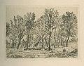 Bouquet d'arbres, James Ensor, Museum Plantin-Moretus, MPM.V.V.261.003.jpg