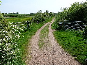 English: Bowling Green Marsh Nature Reserve [1...