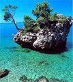 Brela, Southern Dalmatia, Croatia.jpg