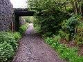 Bridge, Glengorm - geograph.org.uk - 193851.jpg