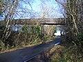 Bridge Carrying Conveyor near Oxley's Green - geograph.org.uk - 304766.jpg