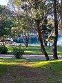 Brijuni Park.jpg