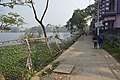 Broken Southern Fence - Santragachi Jheel - Howrah 2017-12-25 5662.JPG