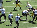 Buffaloes on offense at Colorado at Cal 2010-09-11 44.JPG