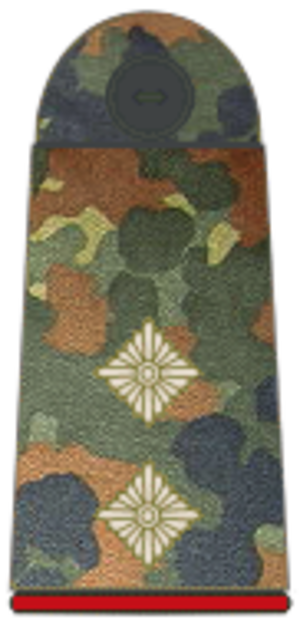 Senior lieutenant - Oberleutnant