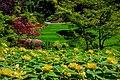 Butchart Gardens - Victoria, British Columbia, Canada (29101733945).jpg