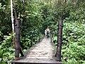 CAMINADO - panoramio.jpg