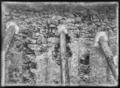CH-NB - Romainmôtier, Abbatiale, Mur extérieur, vue partielle - Collection Max van Berchem - EAD-7478.tif