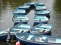 Cadging a lift^ Two herring gulls on the rowing boats that are for hire on the Royal Military Canal - geograph.org.uk - 1258424.jpg