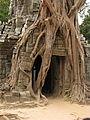 Cambodia 08 - 192 - Ta Som (3238869599).jpg