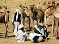 Camel Market (8384454240).jpg