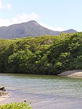 Cape Tribulation 2004 - panoramio (10).jpg