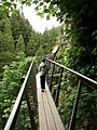 Capilano-Suspension-Bridge-Cliff-Walk-8962.jpg