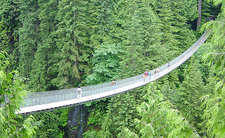 inlingua student activity capilano bridge