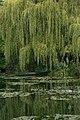 Casa Claude Monet 7614 resize.jpg