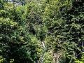 Cascade du Tempa.jpg