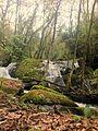 Cascata das Lages Altas (26152906671).jpg