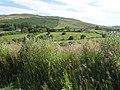 Cashel Townland - geograph.org.uk - 1380090.jpg