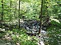 Cedar Falls Trail, Petit Jean State Park 008.jpg