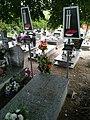 Cemetery in Murowana Goślina (Chrzanowski z MO).jpg