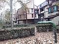 Cerak vinogradi (18.11.2018.), ulica Platana 04.jpg