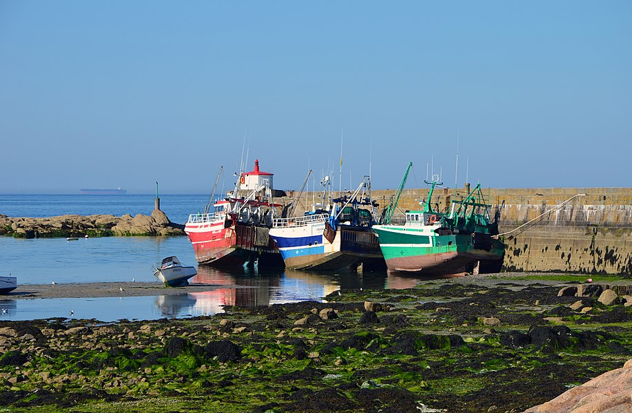 Three fishing boats at low tide in the harbour of Barfleur (Basse-Normandie, France)