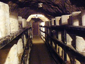 Wookey Hole Caves - Cheddar Cheeses in Wookey Hole Caves