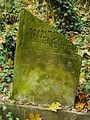 Chenstochov ------- Jewish Cemetery of Czestochowa ------- 135.JPG