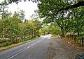 Chester Road - geograph.org.uk - 1658357.jpg