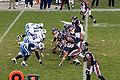 Chicago Bears vs Tennessee Titans 11-09-08.jpg