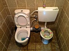 toilet training wikipedia