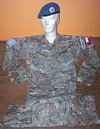 Chilean Navy Uniform