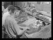 Cigar makers in Puerto Rico, 1942