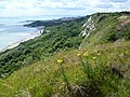 Cliff top view of Folkestone Warren at Capel-le-Ferne - geograph.org.uk - 2551604.jpg
