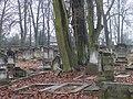 Cmentarz Żydowski-Piotrków Trybunalski.jpg