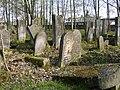 Cmentarz żydowski w Szydłowcu 12.JPG