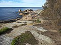 Coast at Bicheno Tasmania 20190725-017.jpg