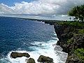 Coastline in Tonga.jpg