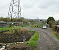 Coity Road allotments, Bridgend - geograph.org.uk - 1603352.jpg