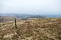 Cold Moss from Lowther Hill - panoramio.jpg