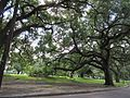 Coliseum Square New Orleans 1 August 2016 02.jpg