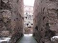 Colosseo - panoramio - Emanuela Meme Giudic… (3).jpg