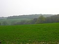 Comb Wood and Timber Wood - geograph.org.uk - 399942.jpg