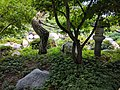 Como Park Zoo and Conservatory - 68.jpg