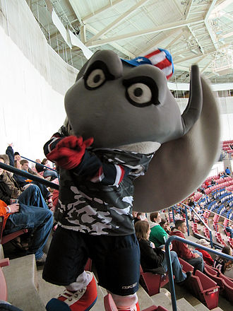 South Carolina Stingrays - Cool Ray entertains fans during the Stingrays' Military Appreciation Night.