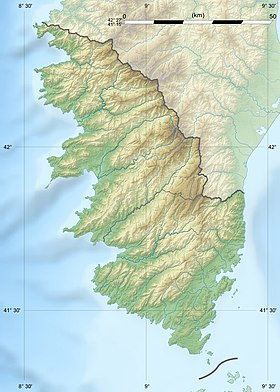 Corse-du-Sud department relief location map.jpg
