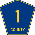 County 1.png