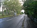 Craigton Road, Milngavie - geograph.org.uk - 1518446.jpg