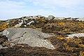 Creag Bhàn, Gigha - geograph.org.uk - 1040693.jpg